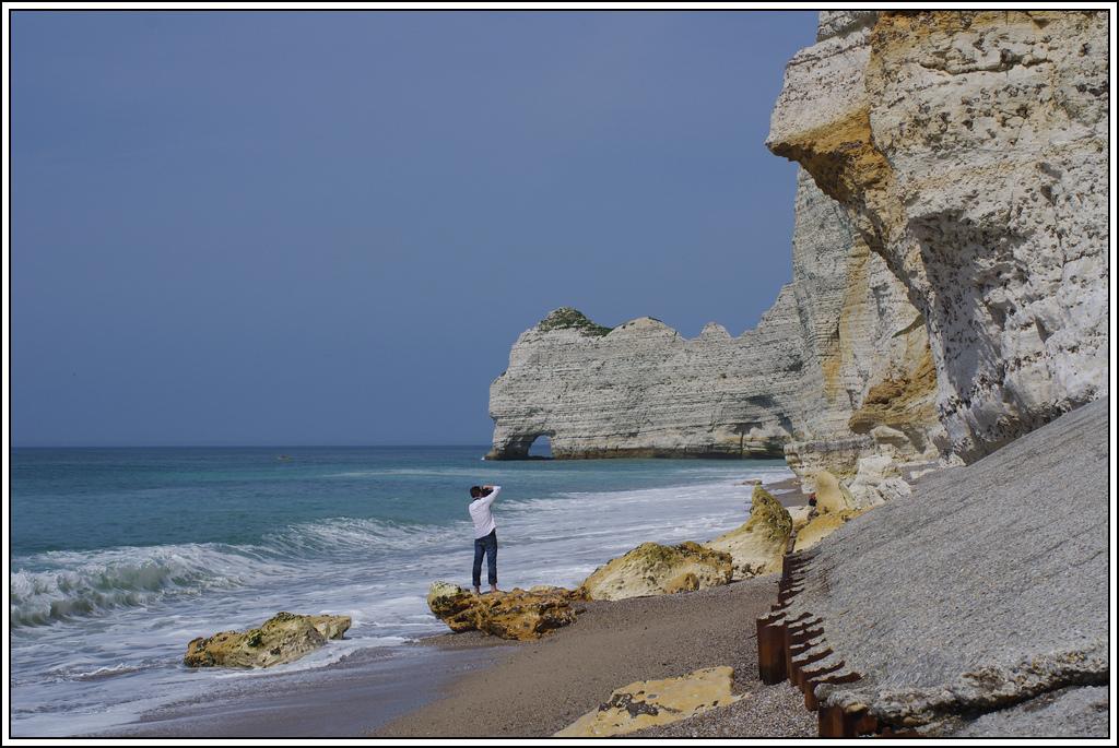 Sortie en Normandie avec des falaises, la mer, les vaches .... K5007584