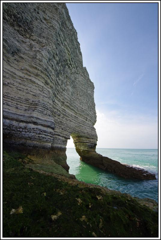 Sortie en Normandie avec des falaises, la mer, les vaches .... K5007624
