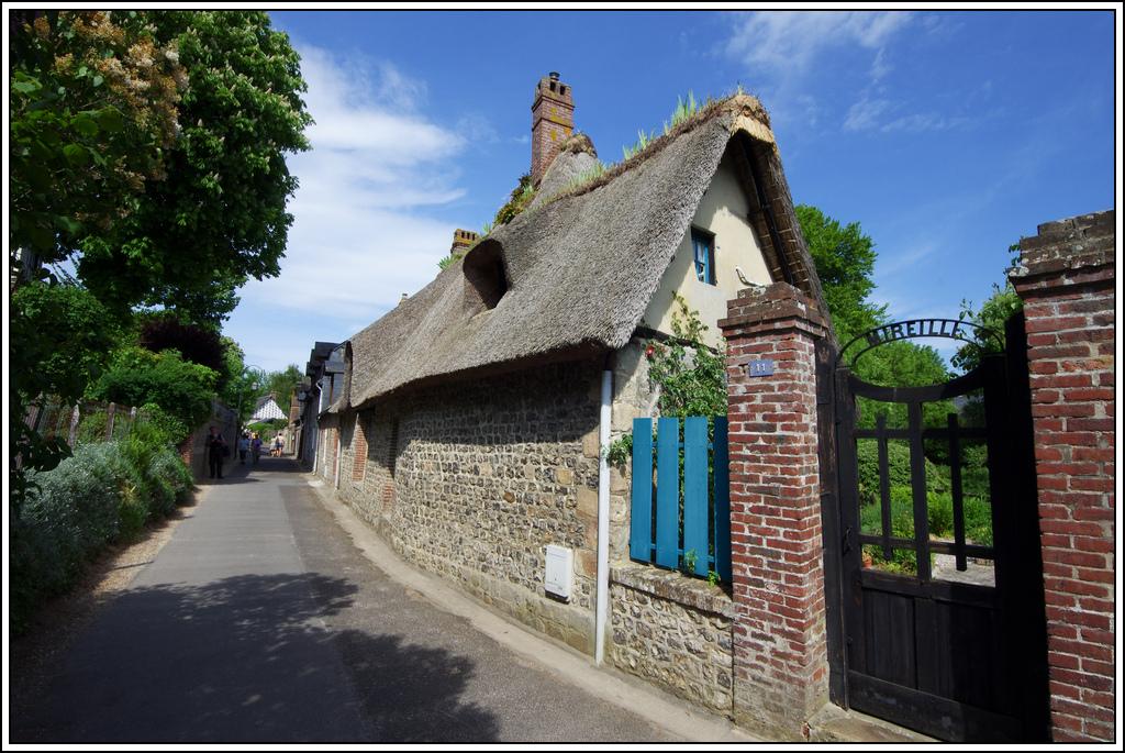 Sortie en Normandie avec des falaises, la mer, les vaches .... - Page 17 K5008013
