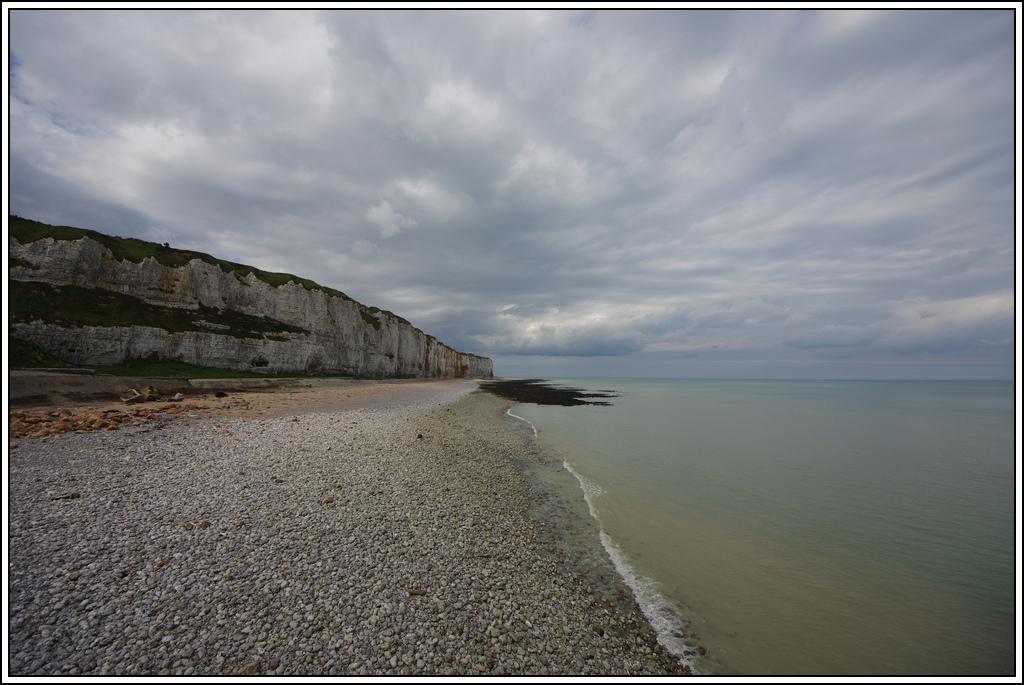 Sortie en Normandie avec des falaises, la mer, les vaches .... - Page 19 K5008206